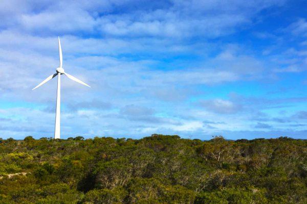low-carbon-australia-home-4
